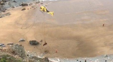 Εντυπωσιακή διάσωση από αέρος ενός ταύρου 800 κιλών που είχε εγκλωβιστεί σε παραλία