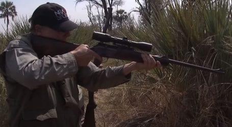 Οργή για το βίντεο με τον επικεφαλής του λόμπι των όπλων να πυροβολεί ελέφαντα