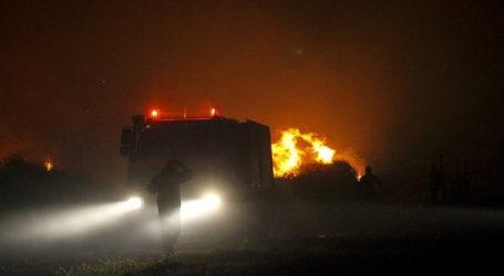 ΤΩΡΑ: Τέταρτη πυρκαγιά στο Πήλιο – Καίγεται έκταση με καστανιές στον Κισσό