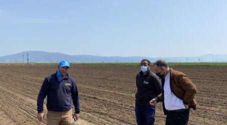 Στους πληγέντες από τον παγετό παραγωγούς βιομηχανικής ντομάτας στη Χάλκη ο Κέλλας