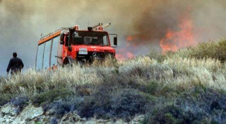 ΤΩΡΑ: Φωτιά στο Πήλιο – Μεγάλη κινητοποίηση της πυροσβεστικής