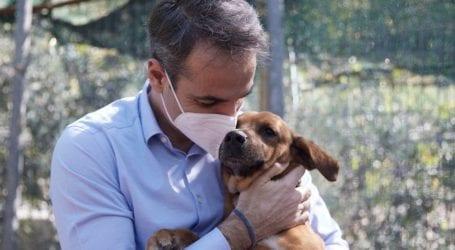 Ο υπέροχος Πίνατ -Το χαριτωμένο σκυλάκι που υιοθέτησε ο Μητσοτάκης από καταφύγιο, βολτάρει στο Μαξίμου [εικόνες]