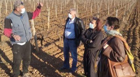 Κλιμάκιο του ΣΥΡΙΖΑ – ΠΣ Λάρισας στις πληγείσες από τον παγετό καλλιέργειες της επαρχίας Τυρνάβου