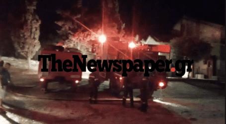 Βόλος: Φωτιά στον λόφο της Γορίτσας- Δείτε εικόνες