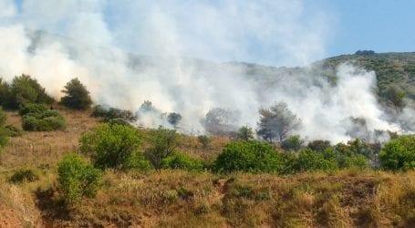 Πυρκαγιά στο πεδίο βολής Βόλου – Δείτε εικόνες