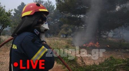 Δείτε Live εικόνα από τη φωτιά στο Αλεποχώρι