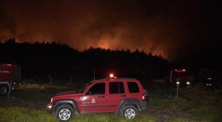 Οριοθετημένη η φωτιά σε δασική έκταση στην περιοχή Βροχίτσα του Πύργου