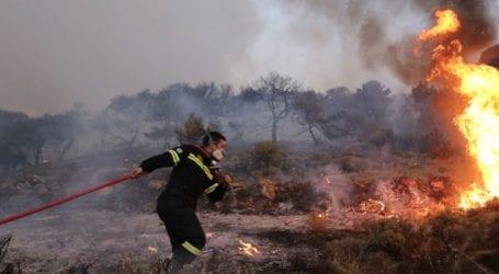 Σε εξέλιξη φωτιά σε δασική έκταση στην περιοχή Ντόμπριτσα, στον δήμο Μεγαλόπολης