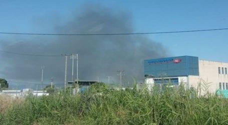 Δεκάδες προσαγωγές μετά από πυρκαγιά έξω από γήπεδο της Κάτω Αχαΐας σε ματς Δ' Εθνικής
