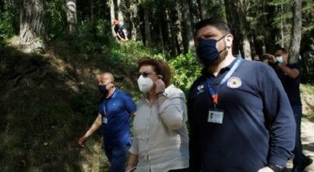 Στο Τατόι κυβερνητικό κλιμάκιο για έργα αντιπυρικής προστασίας