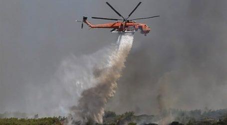 Πυρκαγιά σε εξέλιξη σε δάσος της Λαυρεωτικής