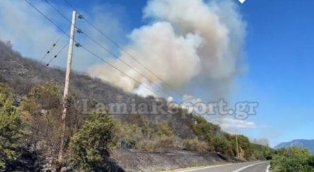 Μεγάλη φωτιά απειλεί σπίτια στη δυτική Φθιώτιδα