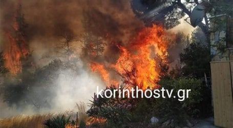 Μεγάλη πυρκαγιά στο Καλαμάκι Κορινθίας – Κλειστός ο δρόμος Ισθμίων