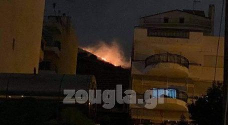 Πυρκαγιά στο Σχιστό – Δεν απειλούνται σπίτια