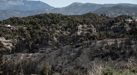 Έγιναν στάχτη 70.000 στρέμματα δάσους στα Γεράνεια