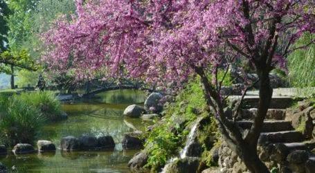 Στους «ιστορικούς κήπους» της Ευρώπης μπαίνει το δημοτικό πάρκο της πόλης