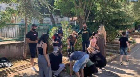 Εθελοντές φύτευσαν αρωματικά φυτά σε δημοτικά σχολεία των Φαρσάλων (φωτο)