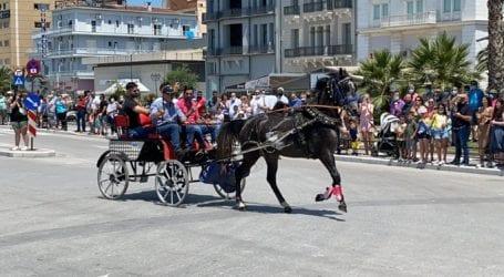Εντυπωσιακές εικόνες στον Βόλο από την Πανελλήνια Ιππική Συνάντηση [εικόνες και βίντεο]