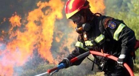 Φωτιά στη Δρυμώνα Εύβοιας