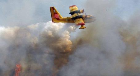 Φωτιά καίει δασική έκταση στην περιοχή Κυανή Ακτή
