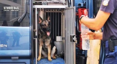 Με εκπαιδευμένο σκύλο ενισχύεται η Αστυνομία στις επιχειρήσεις κατά της παραβατικότητας