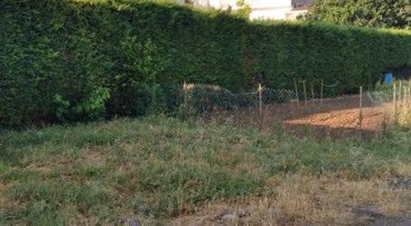 Καταγγελία: Κουρνιαχτός και ξερά χόρτα ενάμιση μέτρου σε δρόμο της Λάρισας (φωτο)
