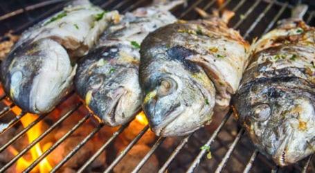 Επισκεφτείτε τη Λεύκα του Μανώλη για νοστιμότατο φρέσκο ψαράκι εποχής