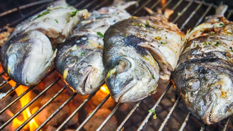 fishes gen