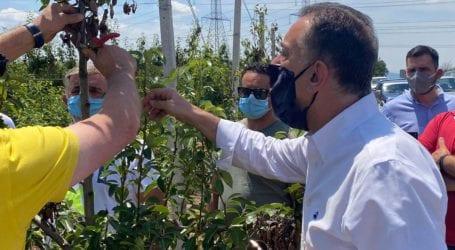 Κέλλας στα Δένδρα Τυρνάβου: «S.O.S. εκπέμπουν οι αχλαδοπαραγωγοί»