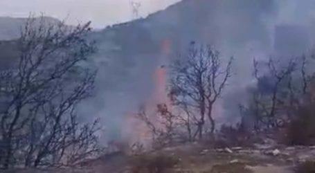 Έσβησε η πυρκαγιά στον Παραπόταμο Δήμου Τεμπών – Σε επιφυλακή παραμένει η Πυροσβεστική (φωτό και βίντεο)