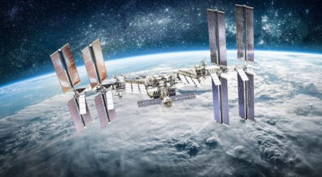 NASA: Γιατί στέλνει 100 μωρά καλαμάρια και 5000 μικροσκοπικά ζώα στο διάστημα;