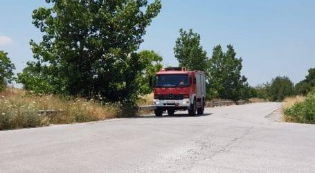 Φωτιά στην Κάρλα – Κάηκαν πέντε στρέμματα με καλαμιές