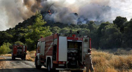 Αλμυρός: Υψηλός κίνδυνος πυρκαγιάς
