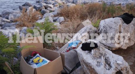 Βόλος: Ανακατάληψη του πάρκου Αναύρου από τσιγγάνους – Νέα επιχείρηση της Δημοτικής Αστυνομίας [εικόνες]