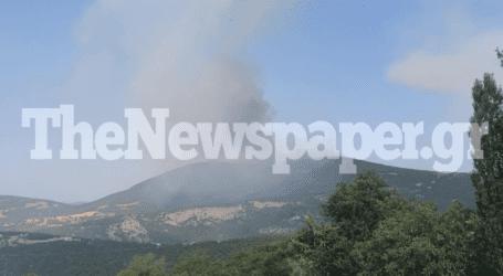 Μεγάλη φωτιά στη Βρύναινα Μαγνησίας – Επιχειρούν εναέρια μέσα [εικόνες]