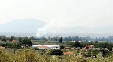 Βόλος: Φωτιά στα Κάτω Λεχώνια