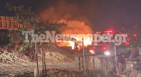 ΤΩΡΑ: Φωτιά σε αποθήκη ξυλείας στον Βόλο [εικόνα]