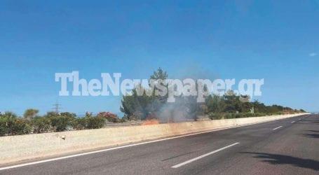 Φωτιά στη νησίδα της εθνικής οδού μεταξύ Βόλου και Λάρισας [εικόνες και βίντεο]