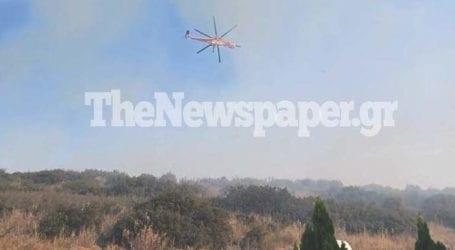 Στο Βιοτεχνικό Πάρκο Βόλου έφτασαν οι φλόγες – Κινδύνευσαν επιχειρήσεις [εικόνες και βίντεο]