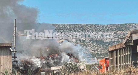 Βόλος: Μεγάλη φωτιά στη Χαλυβουργία – Δείτε εικόνες και βίντεο
