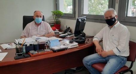 Προβληματισμός στο δήμο Τεμπών για την ακαρπία στα ελαιόδεντρα