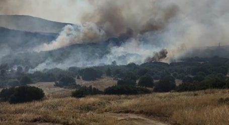 Μεγάλη φωτιά στο Περίβλεπτο Μαγνησίας – Επιχειρούν εναέρια μέσα