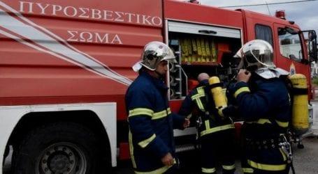 Φωτιά σε δασική έκταση στην περιοχή Κυπαρίσσια του δήμου Μεγαλόπολης
