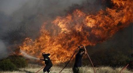 Κύπρος: Ανεξέλεγκτη η μεγάλη πυρκαγιά στη Λεμεσό