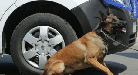 Έκρυβε την κάνναβη στο σασί του αυτοκινήτου αλλά την… μύρισε ο αστυνομικός σκύλος