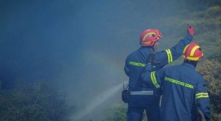 Ρέθυμνο: Φωτιά στην Πρέβελη – Απομακρύνθηκαν οι λουόμενοι – Επιχειρούν ελικόπτερα