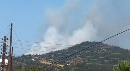 Φωτιά στη Λεμεσό της Κύπρου
