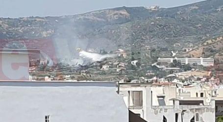 Βόλος: Φωτιά στο Φυτόκο δίπλα σε κατοικίες