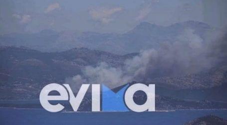 Φωτιά στα Στύρα Ευβοίας – Εκκενώθηκε το Νημποριό