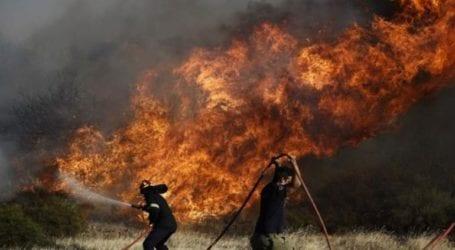 Φωτιά στην κοινότητα Πάχνας της επαρχίας Λεμεσού
